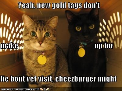 Cheezburger Image 614874880