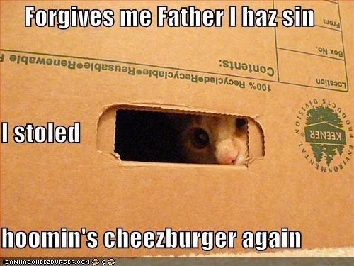 Cheezburger Image 614886656