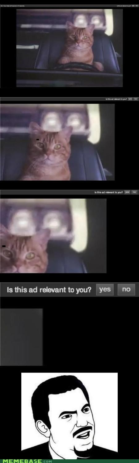 Ad cat Rage Comics relevant srsly - 6149050368