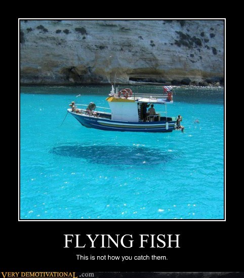 catch fish flying hilarious illusion