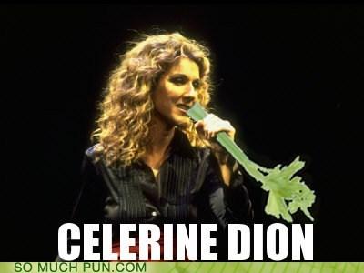celery celine celine dion first name literalism name similar sounding - 6149722624