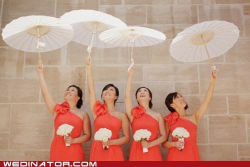 parasols pretty - 6149739008