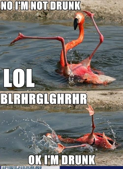 crunk critters flamenco flamingo - 6150007040
