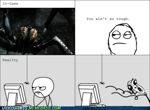 IRL,rage comic,reality,spiders