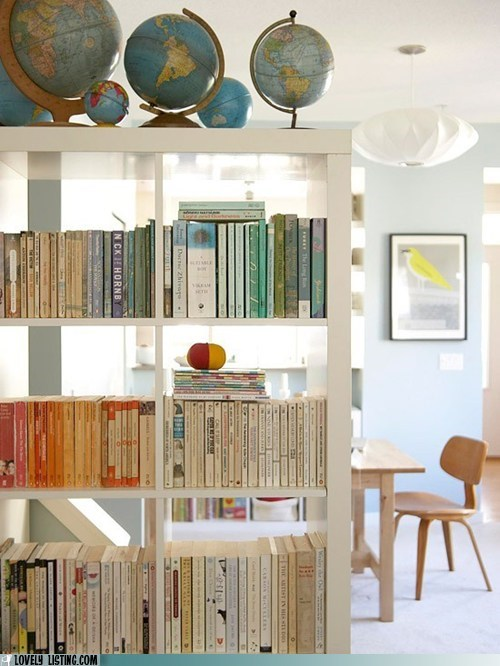 bookcase,books,globes,room divider,shelves