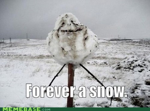 forever alone snow snowman winter - 6150528512