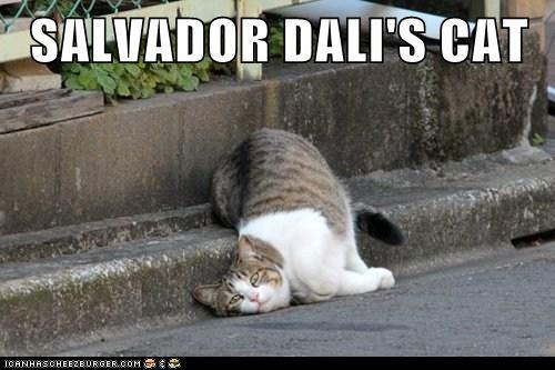 art best of the week Cats clock Hall of Fame lay lazy melt salvador Dali sidewalk - 6150892288