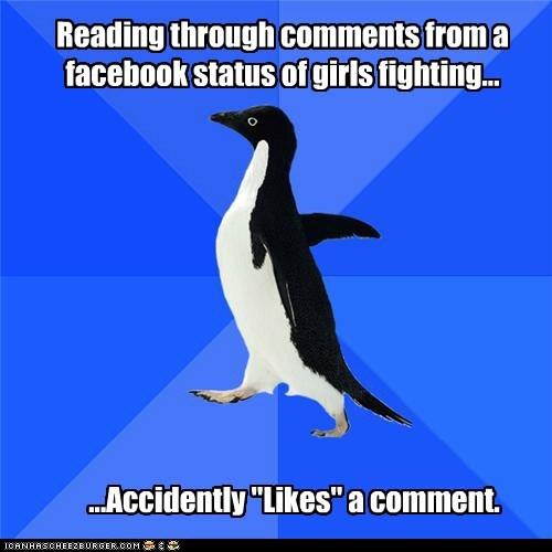 socially awkward penguin likes facebook - 6151214848