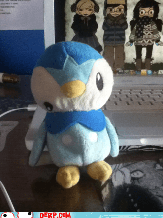 derp,piplup,Pokémon,stuffed animal,toy