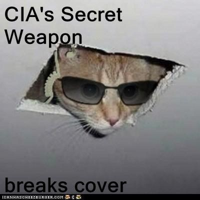 CIA's Secret Weapon  breaks cover
