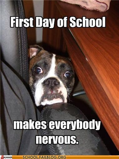 first day of school nervous scared dog - 6152417024