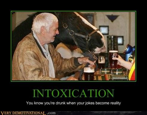hilarious horse intoxicated Ireland wtf - 6152554240