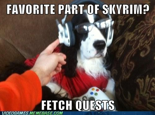 fetch quests,gamer dog,meme,Skyrim