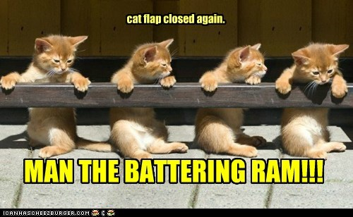 battering ram,break,cat flap,destroy,door,war