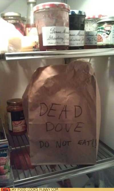 arrested development,bag,dead dove,dove,fridge