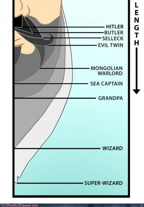 beard Chart facial hair g rated poorly dressed wizard - 6153514240