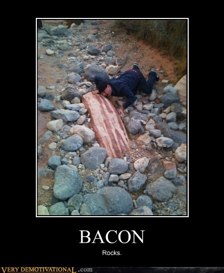 bacon hilarious rock wtf - 6153584384