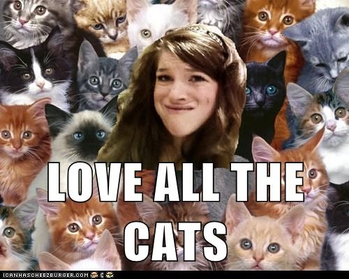 LOVE ALL THE CATS