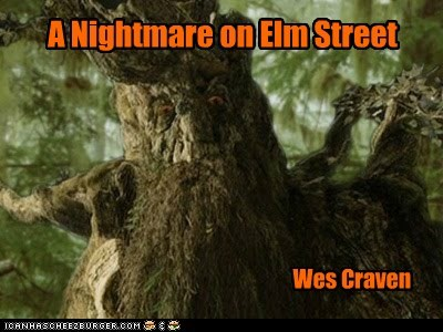 A Nightmare on Elm Street Wes Craven