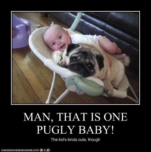 baby dogs pug ugly - 6154142464