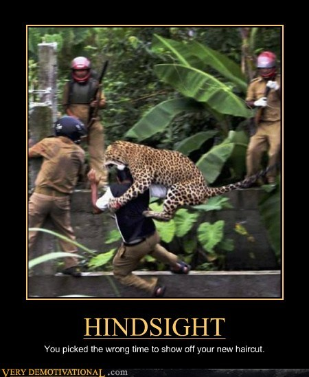 haircut hilarious hindsight jaguar wtf - 6154255616