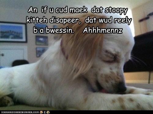 Cheezburger Image 6154544896