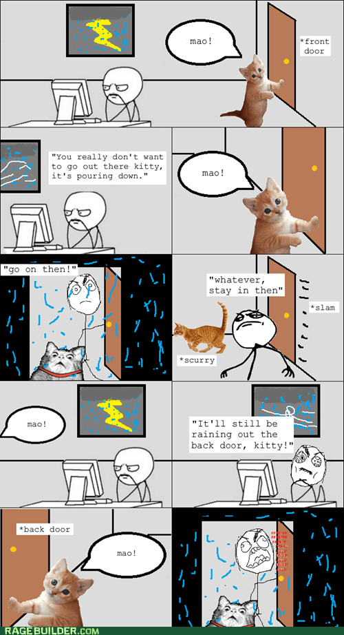 animals,Cats,fuuuuuuu,lightning storm,mao,Rage Comics,rain