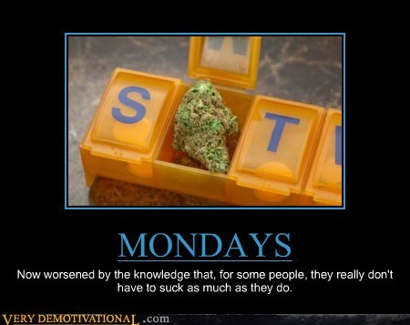 hilarious,monday,suck,weed,wtf