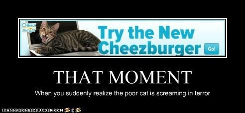 Cheezburger Image 6155389952