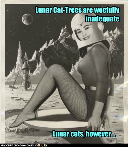 Lunar Cat-Trees are woefully inadequate Lunar cats, however...