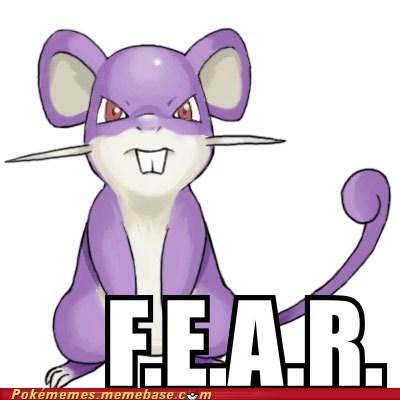 Battle,f.e.a.r,fear,rattata
