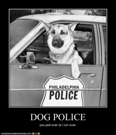 DOG POLICE you pull over or i run over.