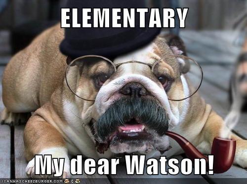 bulldog dogs elementary glasses mustache quotes Sherlock sherlock holmes Watson - 6156344832