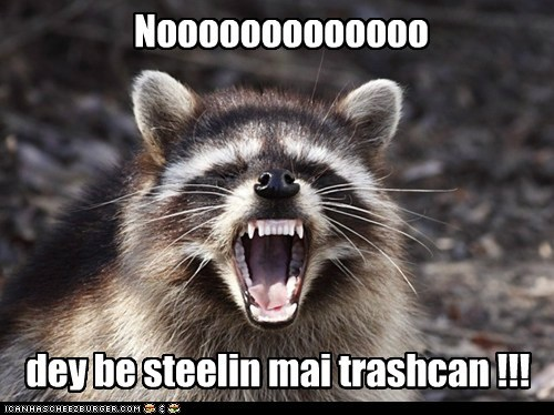 bukkit,lolrus,noooooooo,raccoon,Sad,stealing,tragedy,trashcan