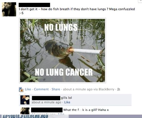 cancer cigarettes failbook fish - 6157315584