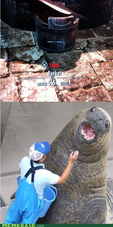 blue bukkit lolrus meme Skyrim steal mah bukkit - 6157367040
