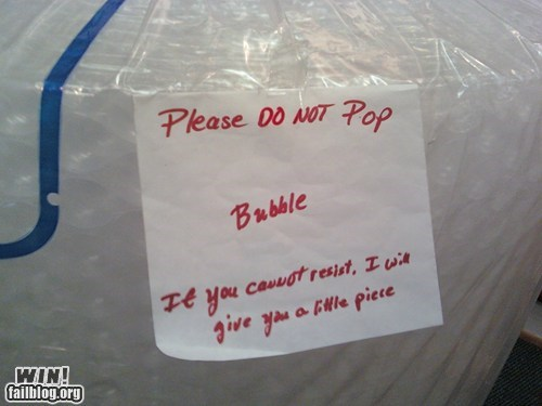 bubble wrap fun ocd pop whee - 6157389568