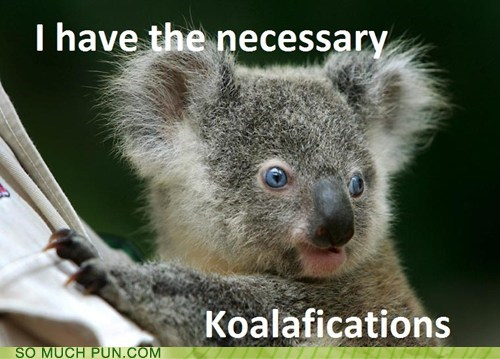 Hall of Fame,koala,koala bears,koalas,literalism,necessary,prefix,puns,qualifications,similar sounding