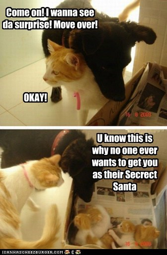 cat,dogs,gift,kitten,Secret Santa