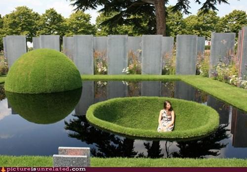 garden pokeball wtf - 6157980416
