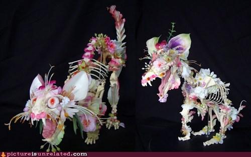artwork Cats Flower skull wtf - 6158006272