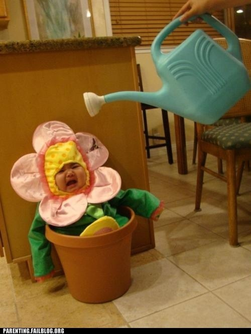 baby costume,crying baby,flower pot,watering can