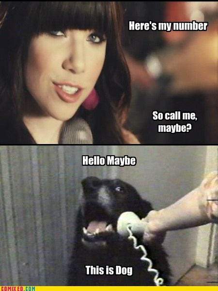 best of week call me maybe Music number the internets this is dog