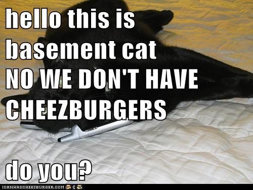 Cheezburger Image 6158244096