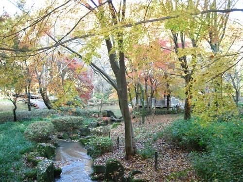 autumn,garden,Japan,river