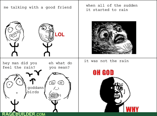 birds,outside,poop,Rage Comics,rain