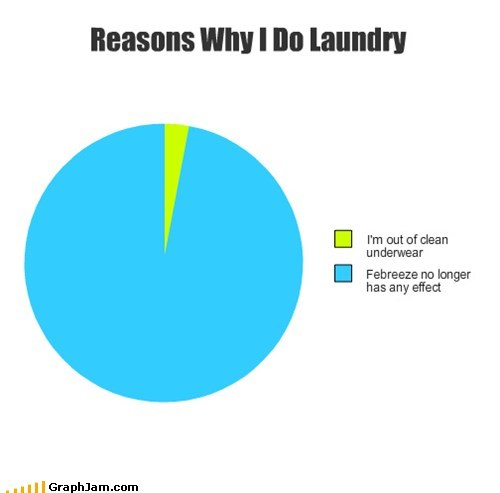 febreeze laundry Pie Chart smells bad