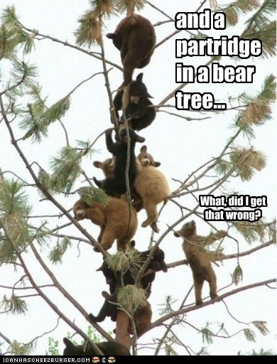 12 days of christmas,bears,captions,Christmas Song,climbing,partridge,pear tree,tree,trees,wrong