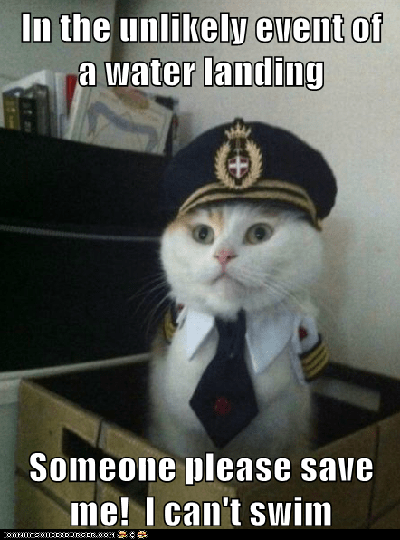 cant-swim Captain Kitteh Cats emergency Emergency Landing Memes pilots planes swim water - 6159297536