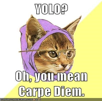 carpe diem Hipster Kitty yolo